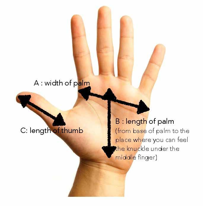 Penis hand length-4796